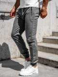 Pantaloni de trening gri bărbați Bolf CE006