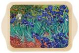 Tava Van Gogh Les Iris | Cartexpo