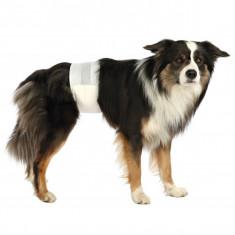 Scutece pentru câini M-L, 12 buc