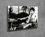 Tablou decorativ, Vega, Canvas 100 procente, lemn 100 procente, 30 x 40 cm, 265VGA1035, Multicolor