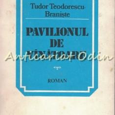 Pavilionul De Vinatoare - Tudor Teodorescu Braniste