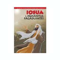 Biblia ilustrata pentru copii 4. Iosua si Pamantul Fagaduintei