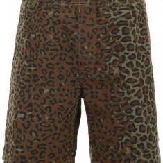 Pantaloni scurti Stussy