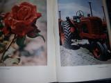 Carte veche foto,TEHNICA SI ARTA FOTOGRAFICA - L.Diko, E.Iofis ,1961,T.GRATUIT