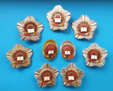 FRUNTAS IN INTRECERE Set 9 bucati anii 1973 - 1980 - Epoca de Aur - Ceausescu