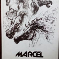 ALBUM MARE CARTONAT: MARCEL CHIRNOAGA (GAMA, 2000) [coordonator CLAUDIU IONESCU]