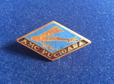 Insignă România - Insignă Aviație - AMC PUCIOASA Planorism (variantă mare)
