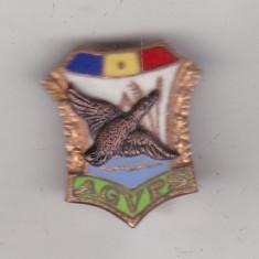 bnk ins Romania - Insigna AGVPS