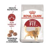 Royal Canin Feline Fit 32, 10 Kg + 2 kg CADOU