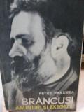 BRANCUSI, AMINTIRI SI EXEGEZE de PETRE PANDREA , 1967