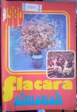 Almanah Flacăra 1980