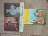 PERIOADA COMUNISTA - ALMANAH SPORTUL-1975, 1977, 1978, 1981, 1984, 1989