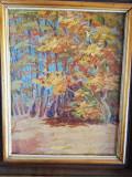 Tablou peisaj, ulei/carton, 50x35 cm, inramat, posibil Eugen Tautu, nesemnat, Arbori, Impresionism