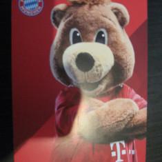 Bayern  Munchen 2018-2019 - Berni (mascota), fotografie