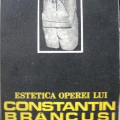 ESTETICA OPEREI LUI CONSTANTIN BRANCUSI- ION MOCIOI, CRAIOVA 1987