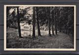 REGHIN VEDERE   GENERALA  REGHINUL SASESC, Necirculata, Printata
