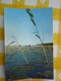 Delta Dunarii - Peisaj - vedere circulata 1963