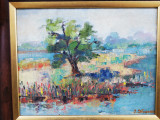 Tablou inramat, peisaj, semnat iliescu, ulei/carton, 30x50 cm, Peisaje, Realism