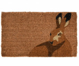 Covoras de intrare Rabbit 45x75 cm