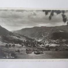 Campulung Muscel,carte postala(fotografie Agfa)1945,cenzurata la Turnu Magurele, Curtea de Arges, Circulata