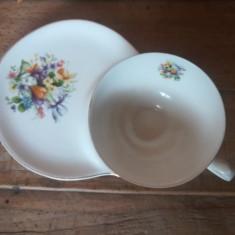 SET DIN PORTELAN PENTRU CAFEA