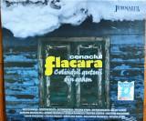 Cenaclul Flacăra - Colindul Gutuii Din Geam (1 CD sigilat)