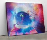 Tablou canvas personalizat Visitator