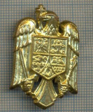 Y 1543 INSIGNA-MILITARA  -EMBLEMA COIFURA -PENTRU COLECTIONARI