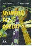 Cumpara ieftin Moneda Si Credit - Vasile Turliuc, Vasile Cocris