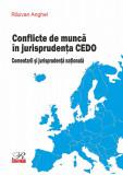 Conflicte de munca in jurisprudenta CEDO | Razvan Anghel