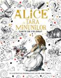 Alice in Țara Minunilor. Carte de colorat