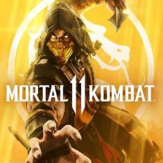 Mortal Kombat 11 PC CD Key