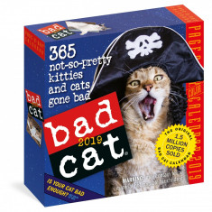 Calendar 2019 - Bad Cat Page-A-Day | Workman Publishing