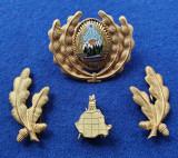 Insigna Militara Ofiter TOPOGRAFIE - Coifura insemn cascheta SEMN DE ARMA RSR
