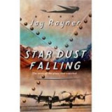 Star Dust Falling. The Story of the Plane That Vanished - Jay Rayner
