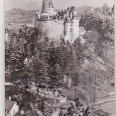 bnk cp Bran - Castelul - necirculata