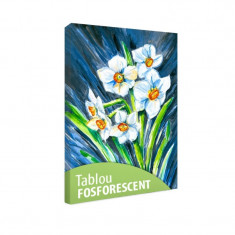 Tablou fosforescent Narcise
