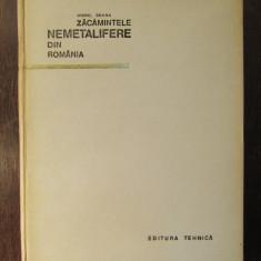 ZACAMINTELE NEMETALIFERE DIN ROMANIA-VIOREL BRANA