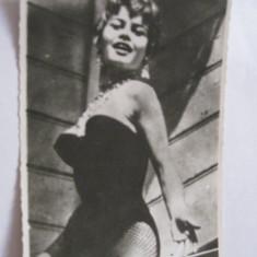 Fotografie actori/film - Brigitte Bardot