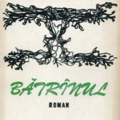 Batranul (Ed Junimea)