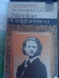 Pe Urmele Lui Nicolae Grigorescu - Valentin Ciuca ,548700