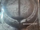 BRANCUSI-NICOLAE SANDULESCU, BUC.1965