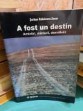 A FOST UN DESTIN/ ȘERBAN RĂDULESCU-ZONER/ 2003