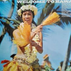 The Happy Hawaiians - Welcome to Hawaii (Vinil)