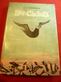 IC Vissarion - Ber-Caciula - Ed. Ion Creanga 1970 ,ilustratii Marcela Cordescu