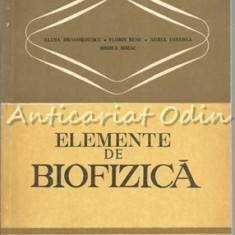 Elemente De Biofizica - Elena Dragomirescu - Tiraj: 4830 Exemplare