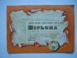 Diploma Consiliul National pentru Educatie Fizica si Sport, anii '70