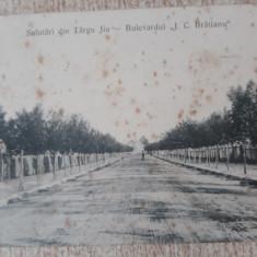 Târgu Jiu - Bdul I.C.Bratianu., Circulata, Fotografie