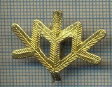 Y 1802 INSIGNA - MILITARA -SEMN DE ARMA -VANATORI DE MUNTE  -PENTRU COLECTIONARI