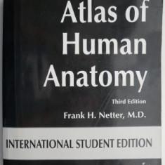 Atlas of Human Anatomy – Frank H. Netter
